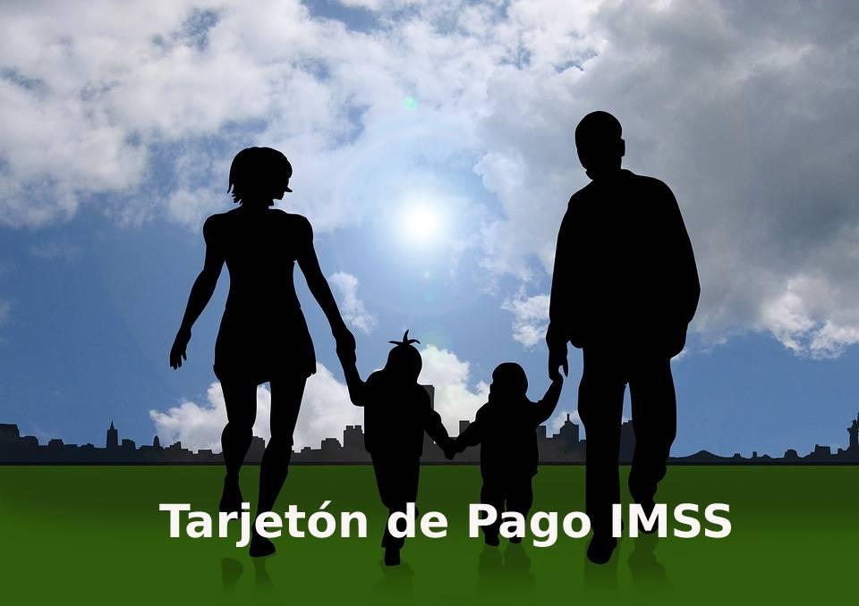 Tarjetón de Pago IMSS